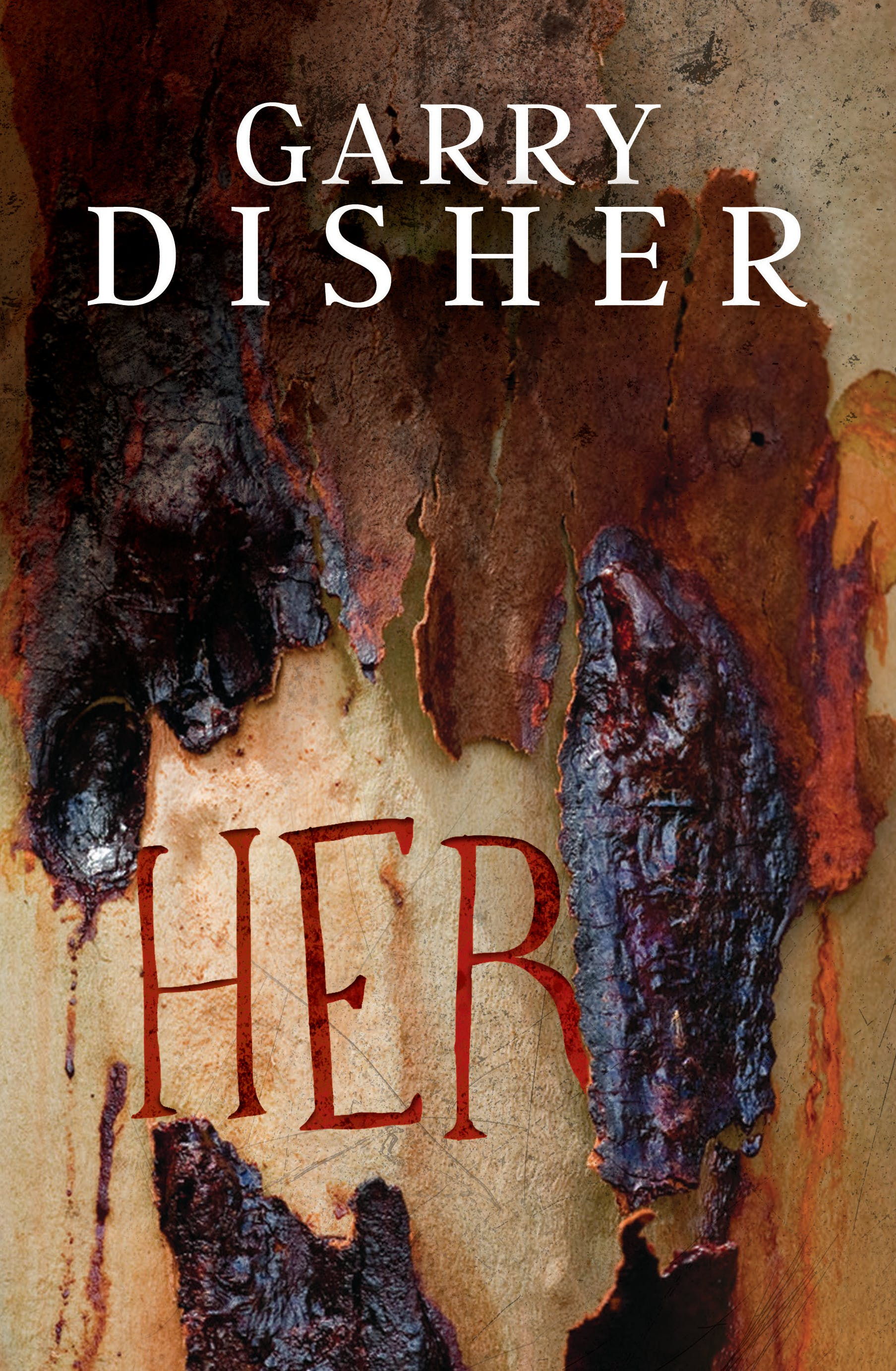 Book Cover: HER